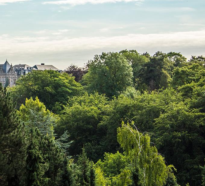 Engagements ESG forêt sur Paris